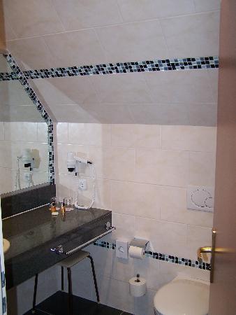 H+ Hotel Willingen: Bath