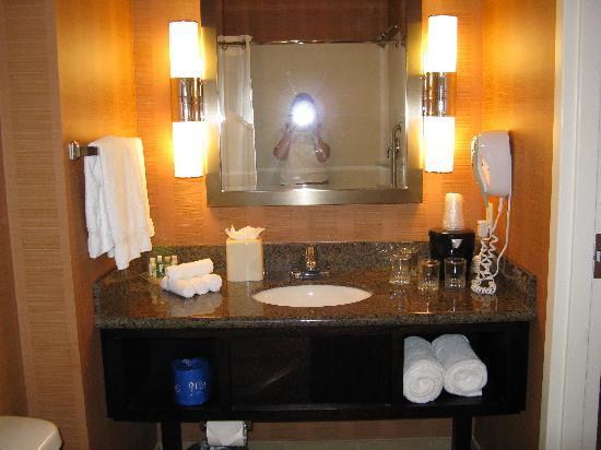 Holiday Inn Hotel & Suites Denver Airport: Vanity