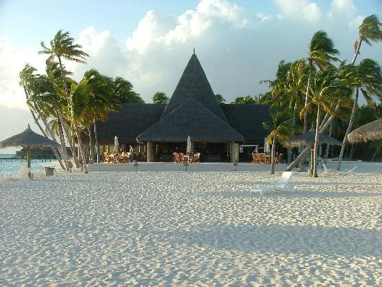 Veligandu Island Resort & Spa: Bar from Beach