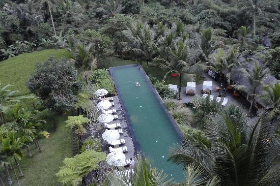 Komaneka at Bisma: Pool & view from lobby