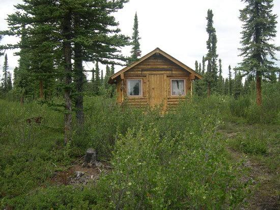 Photo of Huck Hobbit's Homestead Hostel Slana