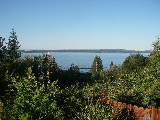 Island Serenity Chemainus Bed & Breakfast / Vacation Rental: View from Deck