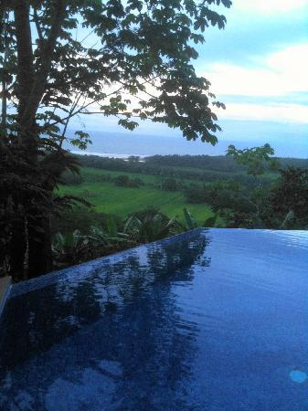 Paradise Breezes: View from the pool at sunset