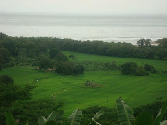 Paradise Breezes: Amazing view of the ocean from our villa driveway