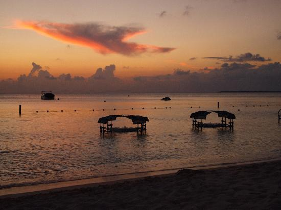 The Ritz-Carlton, Grand Cayman: Floating Bar at Sunset