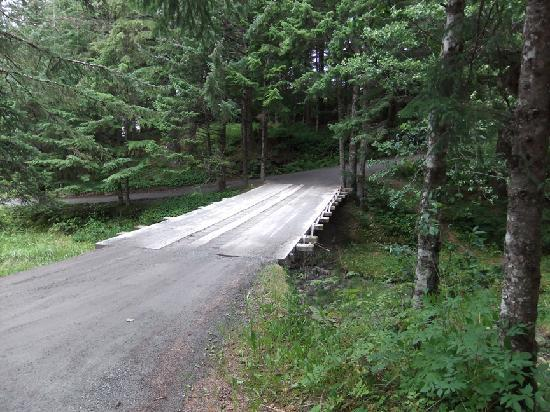 Adlersheim Wilderness Lodge: Bridge over Bessie Creek