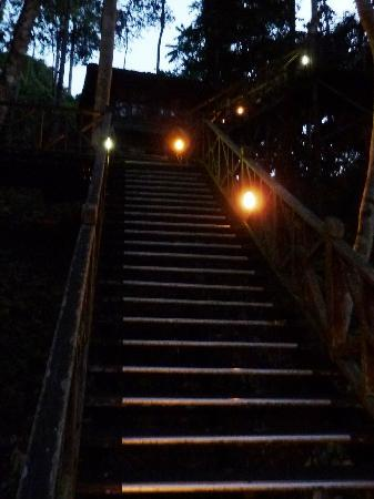 Tabin Wildlife Resort: Stairway to heaven