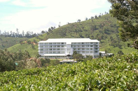 Heritance Tea Factory: Tea Factory