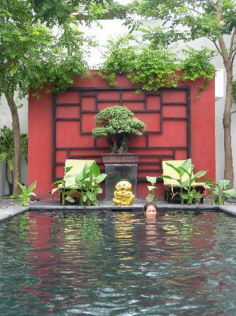 Bonsai Villas: Pool