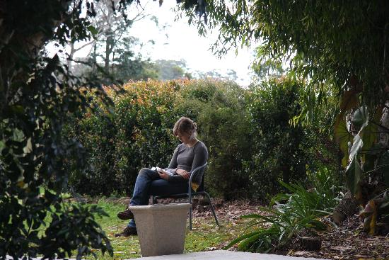 Julia reading in garden at Mapleton Falls Accommodation
