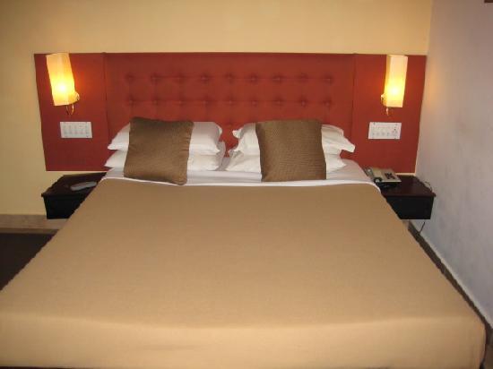 Forest Haven Resort & Vista Rooms
