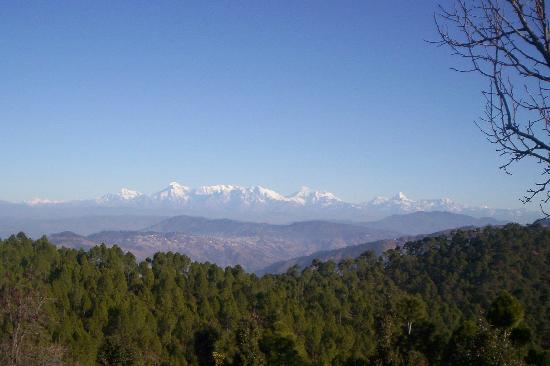 Himalayan Village Sonapani: A view of the mountains from the resort
