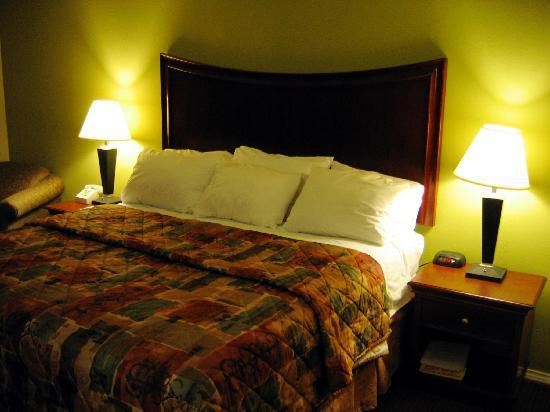 Orangewood Inn and Suites Austin North: The bed....