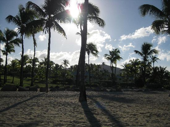 Nisbet Plantation Beach Club: Beach at Sun down