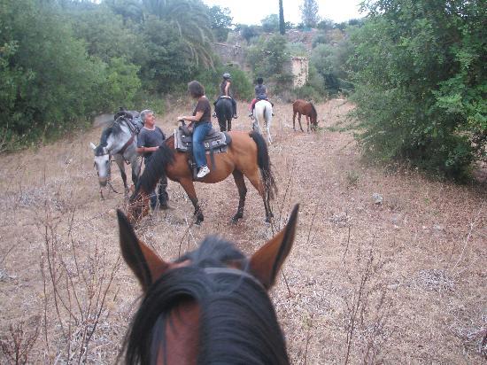 Sortino, Italien: horseback riding at Pantalica Ranch