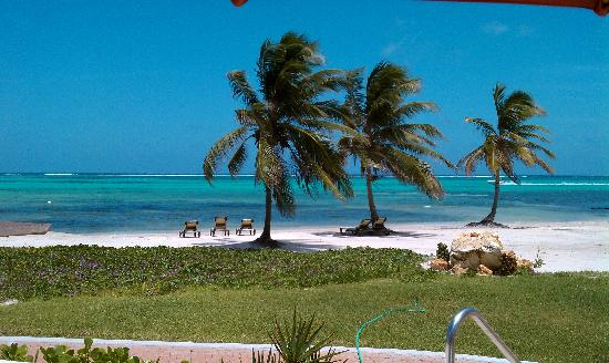 Grand Caribe Belize Resort and Condominiums: Ocean View from the pool