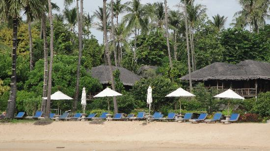 Coral Bay Resort: The Beach