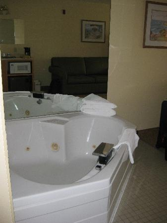 BEST WESTERN PLUS Spirit Mountain Duluth: Room 330 - Whirlpool