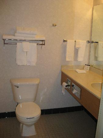 Best Western Plus Spirit Mountain Duluth: Room 330 - bathroom