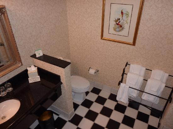 French Quarter Inn: Bathroom
