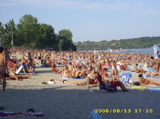 Best Beaches In Belgrade