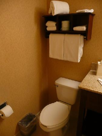 Hampton Inn Sedona: WC