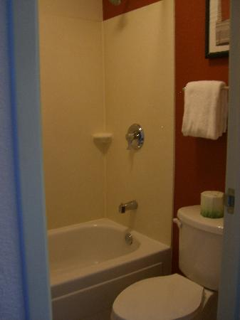 Red Roof Inn Asheville West: bathroom