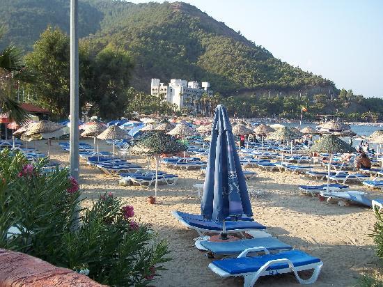Celik Apartments: Beach