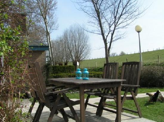 Vakantiedorp het Grootslag: garden with terrace