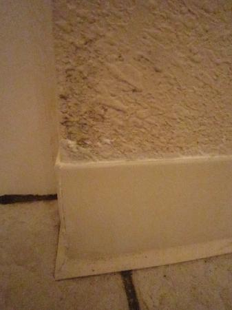 Fairview Beachfront Inn & Waterpark: more mold in bathroom on wall
