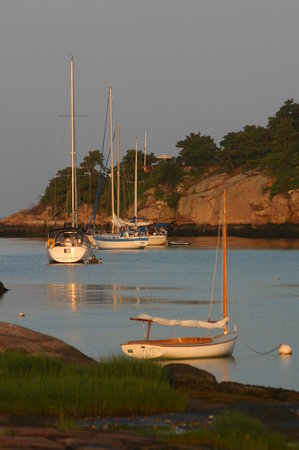 Branford, CT: View of Sailboats at Sunrise from ThimbleIslands.Net