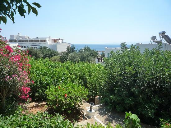 Elounda Breeze Resort : View outside !