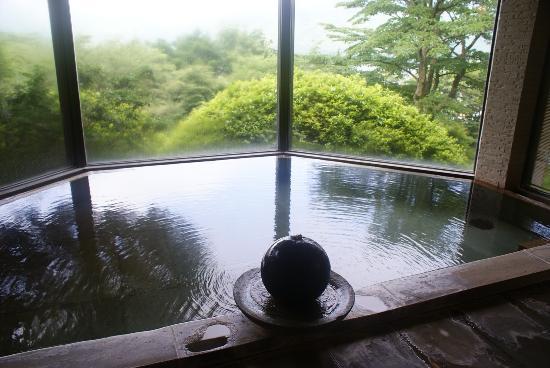 Ryuguden Hotel: 本館の温泉。