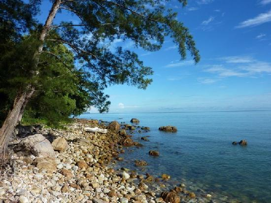 Damai Beach Resort: The beach at Damai in the morning.