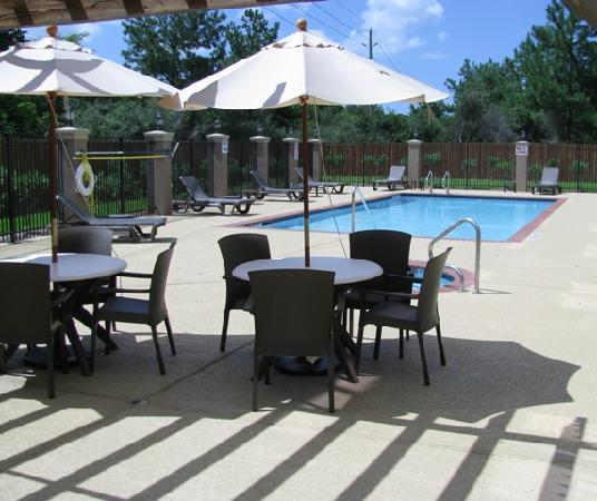 Sleep Inn & Suites I-45 / Airtex: Pool & HotTub