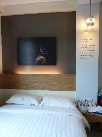 KK Suites Hotel: Bed with Malaysian Blue Flycatcher photograph