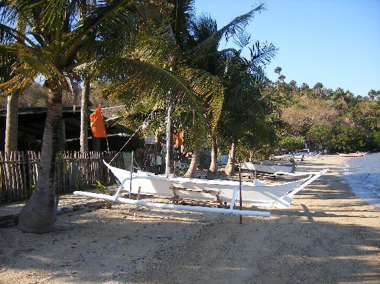 Portofino Beach Resort: SAILING