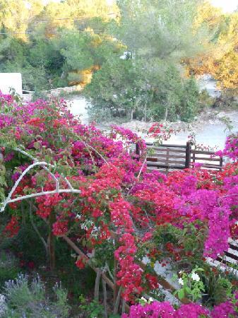 Es Calo, Spagna: vista dalla camera