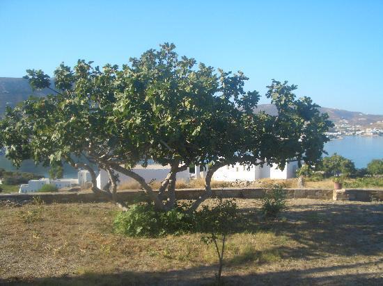Krotiri Bay : bay view 2