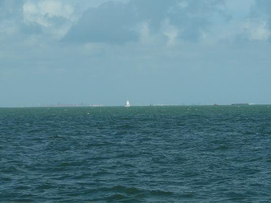La Quinta Inn Corpus Christi South: sailboat across the bay