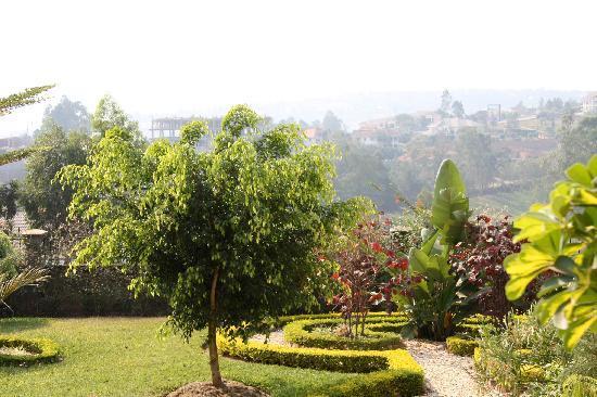 Golf Hills Residence: Gartenanlage