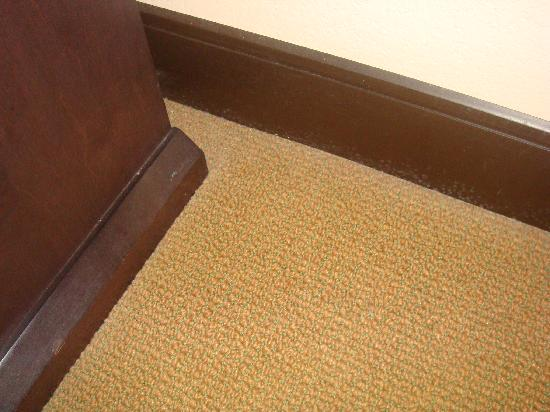 La Quinta Inn & Suites San Antonio Medical Center: dirty carpet edges