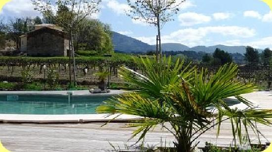 Gites la Franconne: Swimmingpool