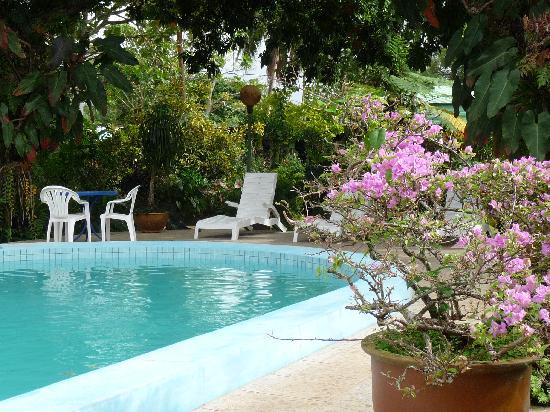 Hotel Santo : Swimming pool