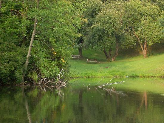 Pelham, Canada: Fishing Pond