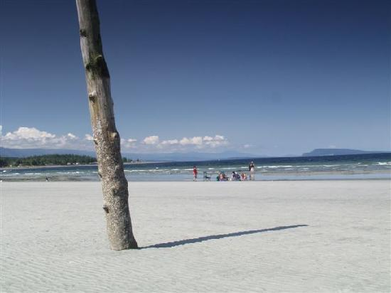 Qualicum Beach is part of over 19kms of sandy beach in the area