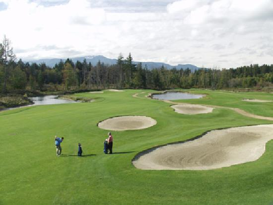 Qualicum Beach (เมืองควอลิคัมบีช), แคนาดา: Pheasant Glen features three of the toughest finishing holes in British Columbia