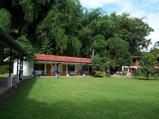 Gavilan Sarapiqui River Lodge: More of the lodge