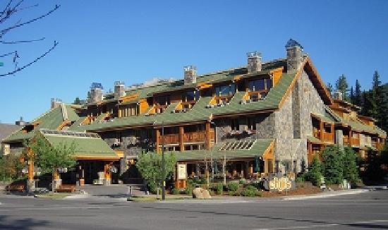 木の香も新しいホテルです