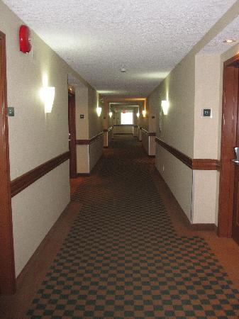 Four Points by Sheraton Prince George: Clean hallways.